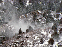 Cold and Windy (Colorado Sands) Tags: trees usa snow cold america us colorado arboles unitedstates wind windy canyon amerika bume dingin blowingsnow rvores pokok jeffersoncounty clearcreekcanyon sandraleidholdt leidholdt sandyleidholdt saljunya
