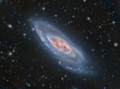 M106 Spiral Galaxy (NGC 4258) LRGB (Terry Hancock www.downunderobservatory.com) Tags: county camera sky color monochrome wheel night dark stars photography mono pier backyard fotografie photos space ngc shed science images off astro stephen observatory telescope filter f canes astronomy imaging messier ccd universe cosmos technologies axis paramount luminance osc wessling teleskop astronomie byo astronomers deepsky newaygo 4258 m106 venatici guider starlightxpress flattener astrotech Astrometrydotnet:status=solved qhy5 Astrometrydotnet:version=14400 at2ff mks4000 qhy9m gt110s 10f8ritcheychrtienastrographat2field Astrometrydotnet:id=alpha20120252462114