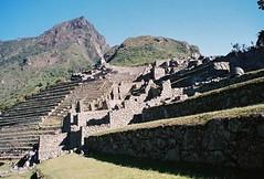 Machu Picchu 1 - 08
