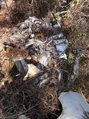 DSC00721 (SixbyFire) Tags: archaeology plane airplane flying san crash aviation tiger flight super line lockheed pacifica bruno constellation 282 wreckchasing
