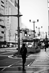Hiroshima City (Imahinasyon Photography) Tags: street city people white black rain japan umbrella canon f14 85mm hiroshima 5d samyang rokinon hondory