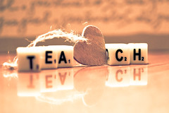 Teach (susivinh) Tags: show macro reflection love canon words heart amor letters teacher reflejo learning cubes staged job teach learn corazon palabras letras aprender profesor cubos mostrar ensear letterblocks focus52