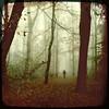 I still miss someone (biancavanderwerf) Tags: trees mist forest walking square landscape person nevel bianca dreamcatcher landschap iphone
