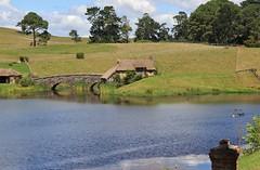 Hobbiton (ali_gata1970) Tags: newzealand film movie scenery lotr waikato lordoftherings shire hobbit movieset hobbiton matamata