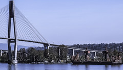 A2130018 (Spectrum Visual Art) Tags: street city people urban canada streets dogs architecture landscape britishcolumbia parks shops newwestminster bildings