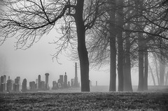 (lynn.h.armstrong) Tags: camera morning trees bw white mist ontario canada black art monochrome graveyard grass st fog silver lens geotagged photography photo lawrence interesting mac aperture nikon long flickr zoom stones south cemetary union wb images graves lynn explore h valley getty pro nik nikkor armstrong stormont vr licence afs request dx sault attribution ingleside 2011 ifed 18200mm f3556 noderivs vrii efex d7000 lynnharmstrong
