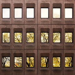 facade (morbs06) Tags: trees windows light colour glass lines architecture facade reflections germany square concrete grid pattern dsseldorf k