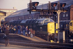Powerful Attraction (SydPix) Tags: york station diesel platform trains signals locomotive fans railways gantry regiment enthusiasts spotters deltic class55 55002 thekingsownyorkshirelightinfantry sydyoung