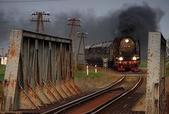 Pt47-65 (DoctorMP) Tags: spring poland polska eisenbahn railway trains steam viaduct polen locomotive locomotives locos dampflok wiosna pkp kolej wielkopolska wolsztyn wiadukt parowóz pt47 parowozy pt4765 dampfloks adamowo