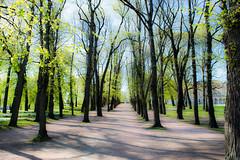 The Royal Palace Park (Slottsparken), Oslo (wpc302) Tags: park oslo norway spring