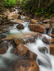 Brook Along Falling Waters Trail (lestaylorphoto) Tags: longexposure nature water america landscape flow outdoors nikon stream hiking newengland newhampshire leslie taylor brook whitemountainsnationalforest d610 1635mm fallingwaterstrail lestaylorphoto