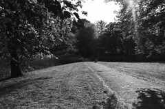 Velsen Zuid (Sean Anderson Classic Photography) Tags: contax m42 fomapan100 bwgreenfilter contaxrx pmkpyro meyeroptik orestegon velsenzuid meyeroptikorestegon29mmf28