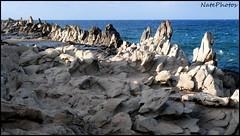 Dragon's Teeth(1) (NatePhotos) Tags: road sunset sea hawaii bay waterfall rainbow cows turtle maui hana jungle waterfalls kapalua rooster eel napili 2016 natephotos