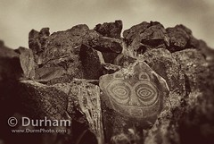 She Who Watches (Michael Durham) Tags: vintage petroglyph rockart columbiarivergorge pictograph ancientart indianart indigenousart nativeamericanart shewhowatches columbiarivergorgenationalscenicarea columbiahillsstatepark horsethieflakestatepark tsagaglalal