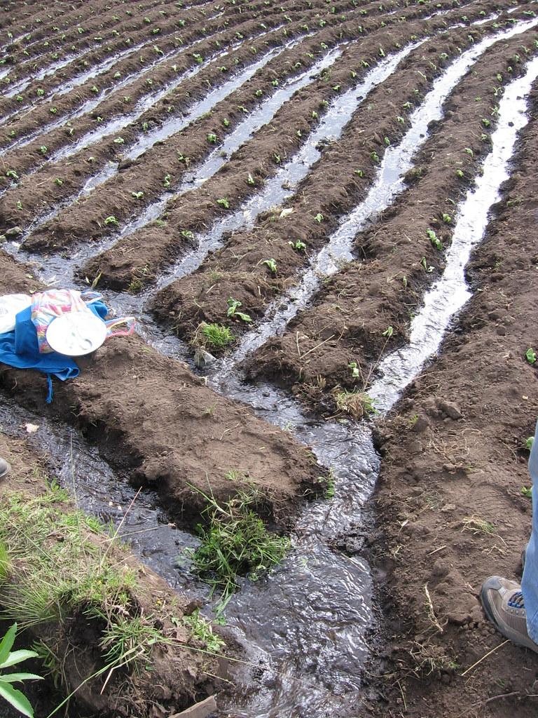 Système d'irrigation Gestion eau Chimborazo