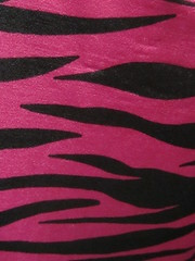 Pink and Black Zebra Print (shaire productions) Tags: pink wallpaper holiday abstract black color art texture love beauty modern photoshop design photo pattern image girly feminine contemporary background patterns free valentine romance textures textile fabric photograph creativecommons downloads download zebra backgrounds reflective layer valentines romantic satin resource valentinesday bold apparel layering tactile animalprint royaltyfree fucshia t4l freedownload copyrightfree freebackground freetexture photoshoplayer