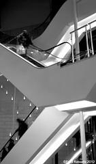 going-down (Fred Kessels) Tags: blackwhite belgium belgique belgi staircase zwart wit trap antwerpen anvers