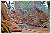 muscat012Muhoot (Mr Abri) Tags: silver women jewellery rings ear antiques bracelets oman muscat nizwa pendants muttrah abdullah تاريخ anklets blueribbonwinner عمان سوق supershot تراث قديمة omania bej abigfave platinumphoto anawesomeshot مطرح فضة مجوهرات جواهر عمانية alabri ةع