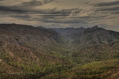 "Coming Storm (Danny Buxton) Tags: usa canon landscape nc mark national 5d gorge wilderness burke ii"" 2012 mountains"" wow1 county"" area"" ""canon ""north forest"" carolina"" mygearandme ""burke ""linville ""pisgah 24mm105mm"""