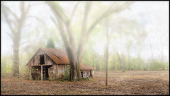 Old Foggy Barn (Marvin Foran Photography) Tags: fog oaktrees oldwoodenbarn jacksoncofl marvinforanphotography