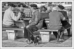 Los lunes al sol (La ventana de Alvaro) Tags: espaa sol banco tarde charla tertulia jubilados parados afiiae afiiar