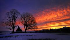 A glory morning (alpenbild.de) Tags: morning trees red sky orange tree rot contrast bayern bavaria dawn purple himmel chapel kontrast bäume sonnenaufgang morgen baum chiemsee kapelle purpur bernau 巴伐利亚 chiemgau runrise hittenkirchen alpenbildde