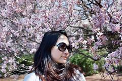 Salina & Cherry Blossom 2012 (Calvin.ipsy) Tags: japan 35mm cherry shinjuku blossom sony summicron gyoen f2 asph nex7