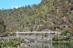 Cataract Gorge bridge (dracophylla) Tags: australia tasmania cataractgorge firstbasin westlaunceston