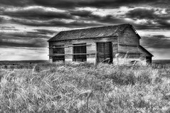 This is Washington State No. 6 - Palouse Falls Barn (Wizard of Wonders) Tags: old sky blackandwhite usa beautiful field grass weather clouds barn landscape wooden washington state peaceful blowing tallgrass palouse threedoors