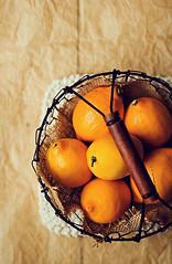 Meyer Lemons (onegirlinthekitchen) Tags: winter yellow fruit canon 50mm lemon wire basket rustic produce citrus cloth meyer