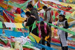 RURAL CHINA: The Next Ten Years (D J Clark) Tags: china tibet amdo tibetan prayerflags  buddhists qinghai  chn    tibetanwomen  hainantibetanautonomousprefecture      lajishan          duowa  guide