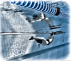 The Great Northern (apneaboy111) Tags: people sports water pool swimming swim liverpool underwater dynamic unitedkingdom competition freediving fin athlete ernesto apnea plonge gbr monofin skindiving freediver dyn apne breathhold plonge apne