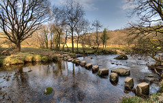 Stepping Stones over the East Dart river - Explore 83 (rosyrosie2009) Tags: uk trees england water river walking landscape photography spring photos explore devon steppingstones hdr westcountry westernmorningnews tonemapped devonandcornwall eastdartriver d5000 rosiesphotos westernmorningview tamronspaf1024mmf3545diiildasphericalif rosiespooner rosyrosie2009 rosemaryspooner rosiespoonerphotography