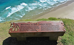 Sancturay for NZ Jewels (Jocey K) Tags: ocean blue trees sea newzealand sky people lighthouse tree green art beach water sign clouds words bush rust hills pacificocean nz northisland northland tasmansea pathway flax capereinga aupouripeninsula