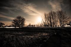 Moonlight Sonata (Ballad Of Big Nothing) Tags: longexposure trees moon night clouds stars landscape scotland eastlothian aberlady canon1740l