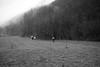 "Saltafossa Merda Mountain Race • <a style=""font-size:0.8em;"" href=""http://www.flickr.com/photos/49429265@N05/13349932365/"" target=""_blank"">View on Flickr</a>"