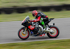 ts140008a (Phil Newell) Tags: racing motorbike motorracing racer anglesey aprilla motorbikeracing folkard angleseycircuit thundersport thundersportgb