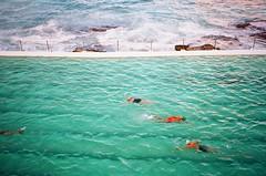 Morning laps (Robert Ogilvie) Tags: sydney australia contaxt oceanpool