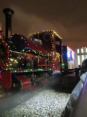 IMG_1665 (Hampton & Kempton Waterworks Railway.) Tags: devon 2014 santaspecial darent