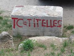 Independentistas insaciables (Eduardo Gonzlez Palomar) Tags: barcelona catalonia tc catalunya tribunal justicia catalua fanatismo constitucional riells bigas bigues independentismo