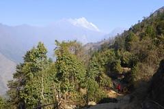 Ein prchtiger Tag (Alfesto) Tags: nepal trekking wanderung paiya cheplung