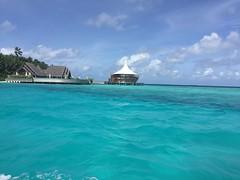 Arriving at Baros Maldives (Simon_sees) Tags: travel vacation holiday island hotel resort tropical maldives luxury 5star luxurious baros