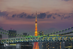 Tokyo Tower Rainbow (Suzuki san) Tags: longexposure japan night tokyo asia cityscape tokyotower rainbowbridge