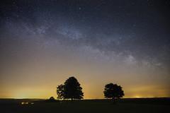 Voie lacte (Fabien Husslein) Tags: sky france tree nature silhouette night pose way stars long exposure ciel pollution lorraine nuit arbre cosmos constellation voie etoiles moselle mily longue univers lactee
