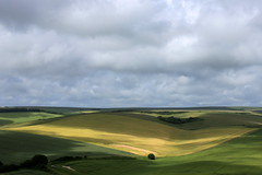 Sussex downs and cloud shadows (muffinn) Tags: sussex downs platinumheartaward