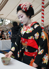 Maiko 'Katsune' / Tea Ceremony (Marie Eve K.A. (Away)) Tags: travel winter flower colour tree nature japan lady spring kyoto maiko geiko geisha  kimono teaceremony annual teaparty 2012  plumblossom nodate plumblossoms baikasai hanamachi  feb25 kanzashi kitanotenmangushrine    geigi  kagai february25th   kamihichiken katsune outdoorteaparty plumflowerfestival  feb252012 plumblossomsfestival plumflowersfestival