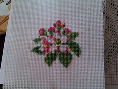 Apple blossom (freddiefraggles) Tags: pink white flower green apple rose crossstitch blossom sewing crafting