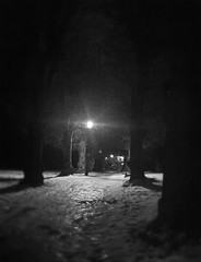 039/366 [08.02.2012] (paulyd) Tags: trees light bw snow ice lamp evening path hertfordshire ware iphone project365 project366 iphone365 iphoneography iphone366