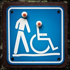 (David Panevin) Tags: blue eye sign toy eyes australia olympus eyeball queensland e3 cairns botanicalgarden nokton voigtlnder japanesetoy travelingtoys  medamaoyaji ykai voigtlandernokton58mmf14slii davidpanevin