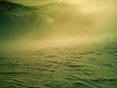 trees mist mountain snow blur ski mountains alps color... (Photo: Мaistora on Flickr)